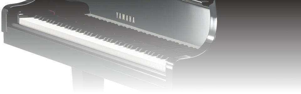 ピアノ人気の種類